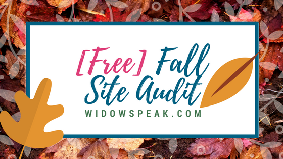 Free Web Site Audits Through November